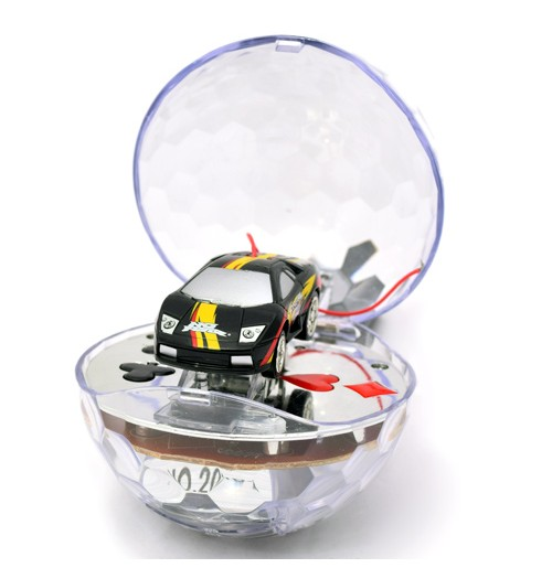 Mini RC Car