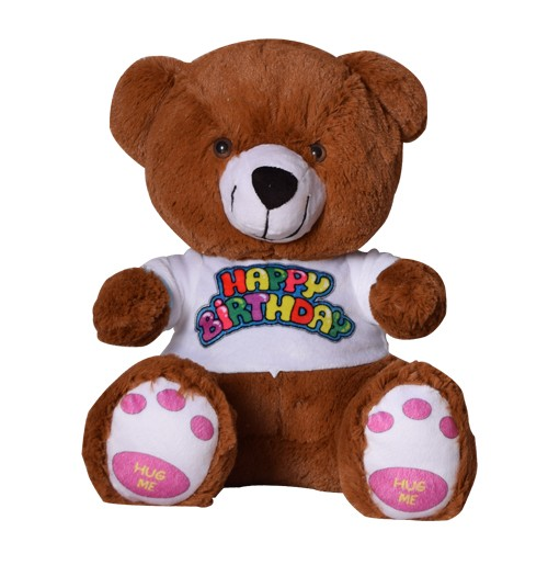 13 inch T Shirt Teddy Bear